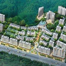 桂花城鸟瞰图