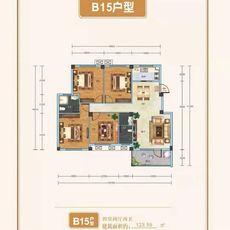 天瑞城B15户型图
