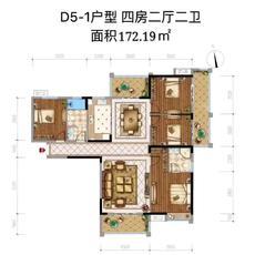 中央城三期--D5-1
