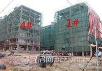 长江花园12月最新工程进度